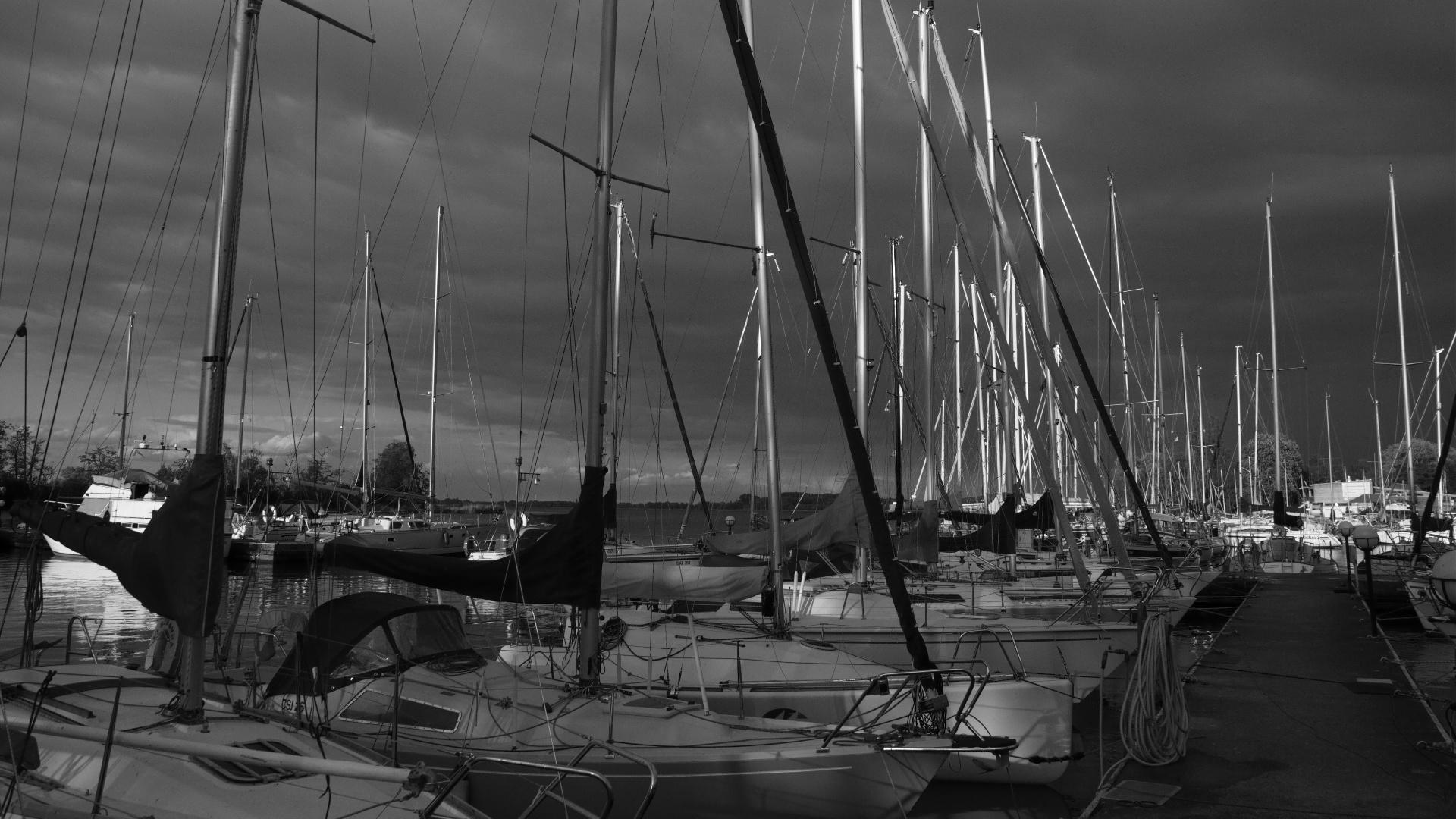 Przygotowania do Damskich Regat o Bukiet Jeziora Dąbie 2012